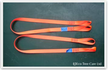 Tree Surgery Equipment - LOLER chainsaw strop Inspection