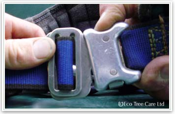 Tree Surgery Equipment - LOLER harness  clip Inspection