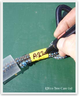 Tree Surgery Equipment - LOLER  Equipment marking