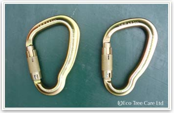 Tree Surgery Equipment - LOLER rigging karabiner Inspection