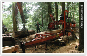 Portable Sawmill For Sale Uk