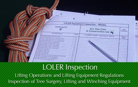 Tree Surgery Equipment - LOLER  Inspection
