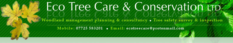 Eco Tree Care & Conservation Ltd
